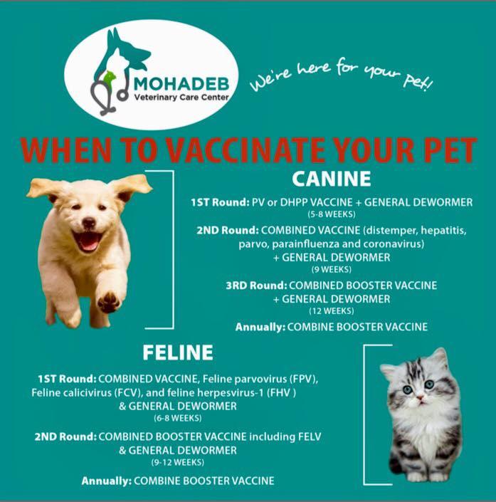 Mohadeb Veterinary Care Centre